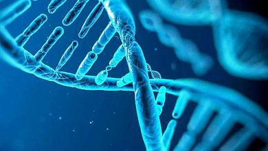 Photo of رفتار سلولهای سرطانی و تأثیر سیگنالهای مختلف بر آنها
