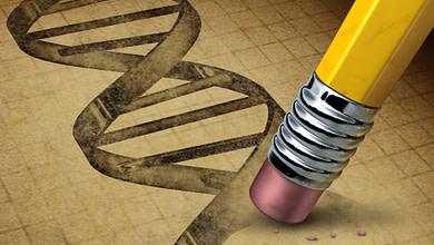 Photo of مهندسی بافت؛ کریسپر؛ روشی برای ویرایش محتوای ژنوم